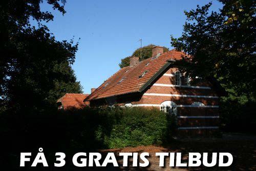3 tilbud træfældning Køge – Spar 40%